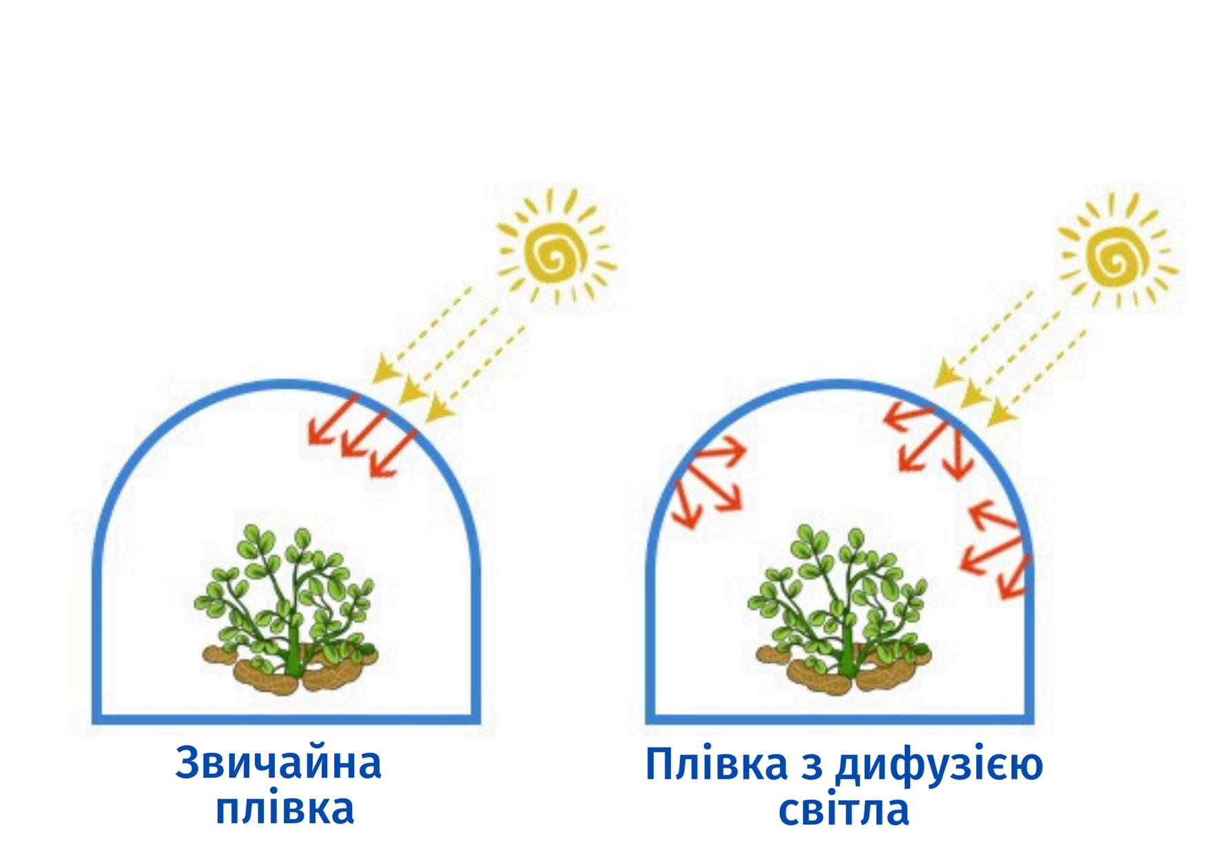 Теплична плівка з ефектом розсіювання сонячного світла